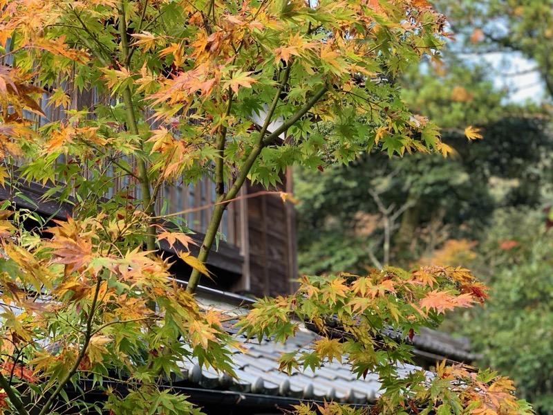石川県旅行とお泊りキャンプ(^O^)/