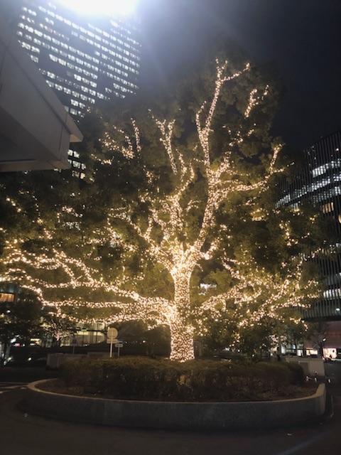 名古屋のイルミネーションを見て来ました。