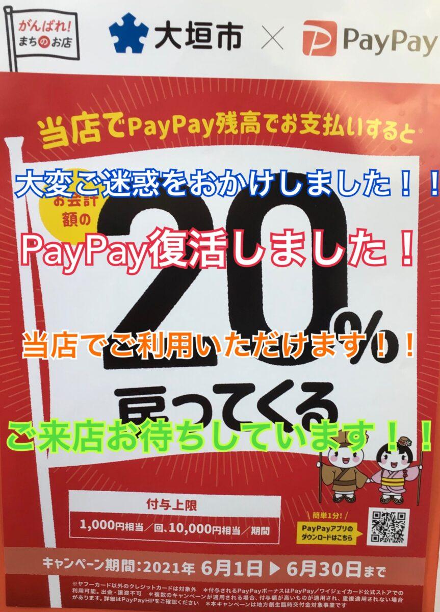 PayPay復活しました!